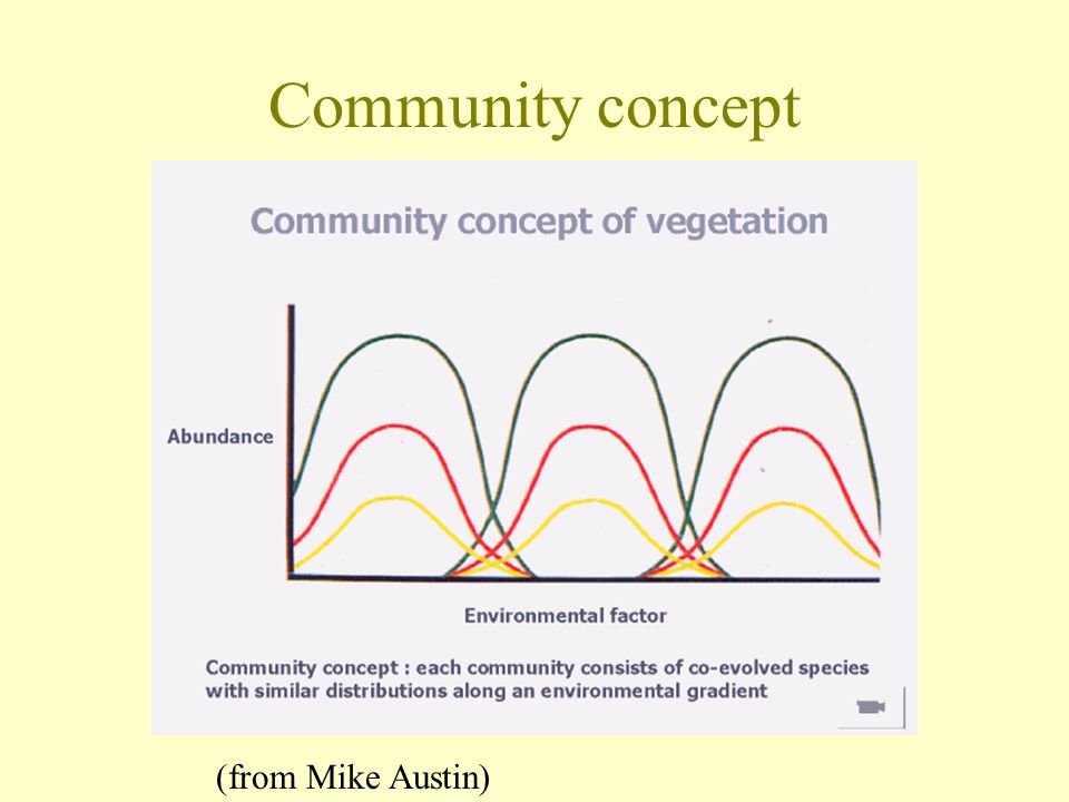 Community concept (from Mike Austin)
