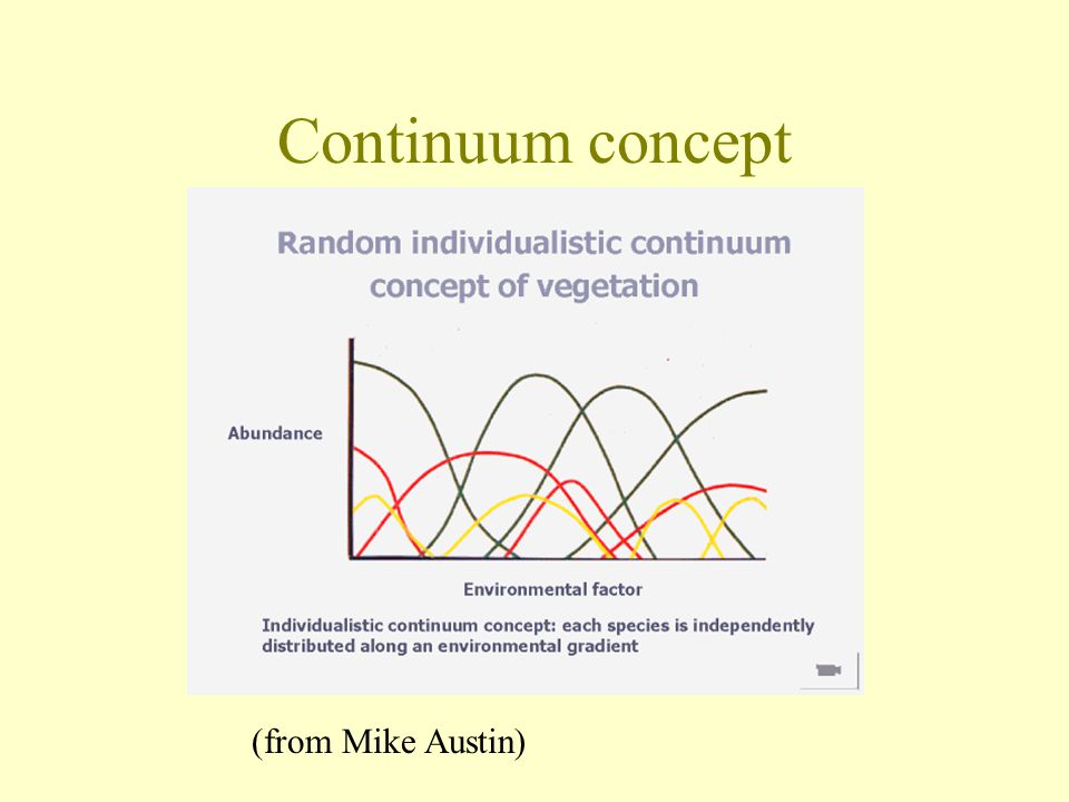 Continuum concept (from Mike Austin)