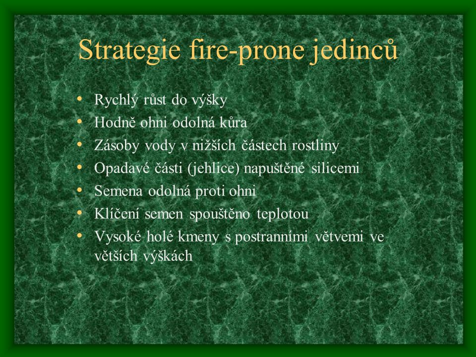 Strategie fire-prone jedinců