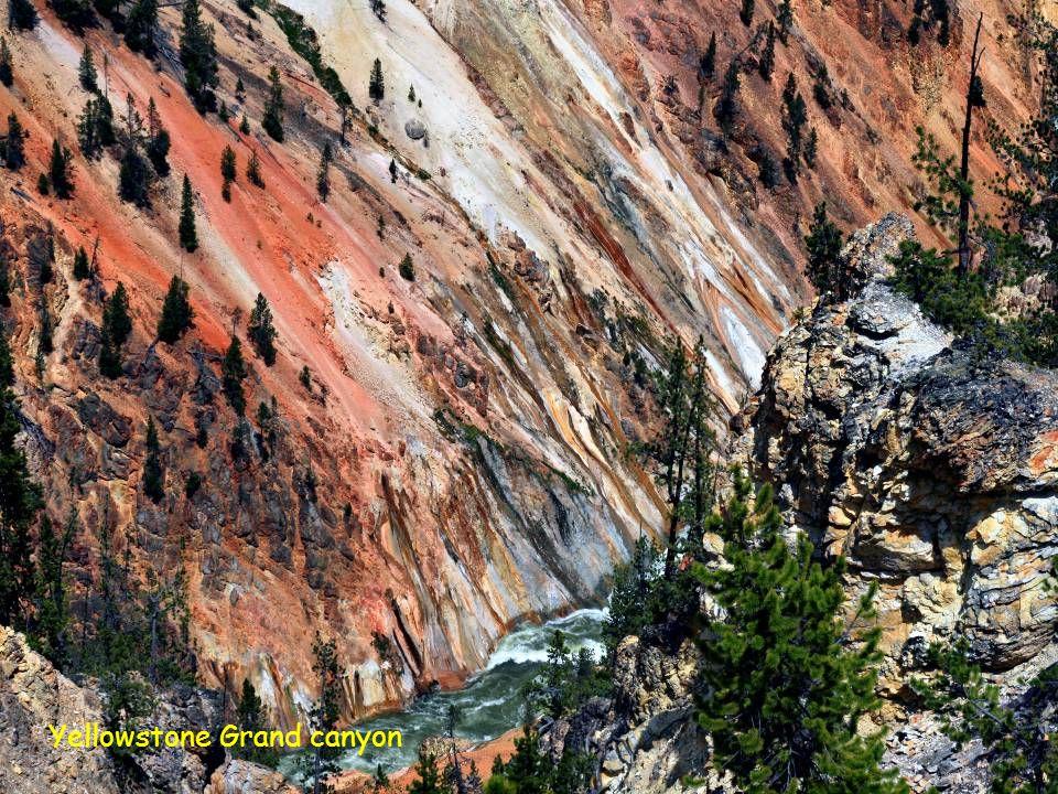 Grand Canyon datovania projektu