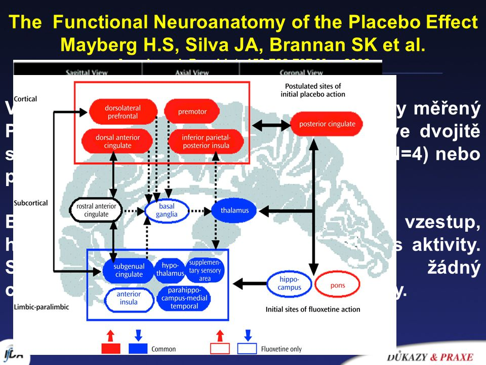 The Functional Neuroanatomy of the Placebo Effect
