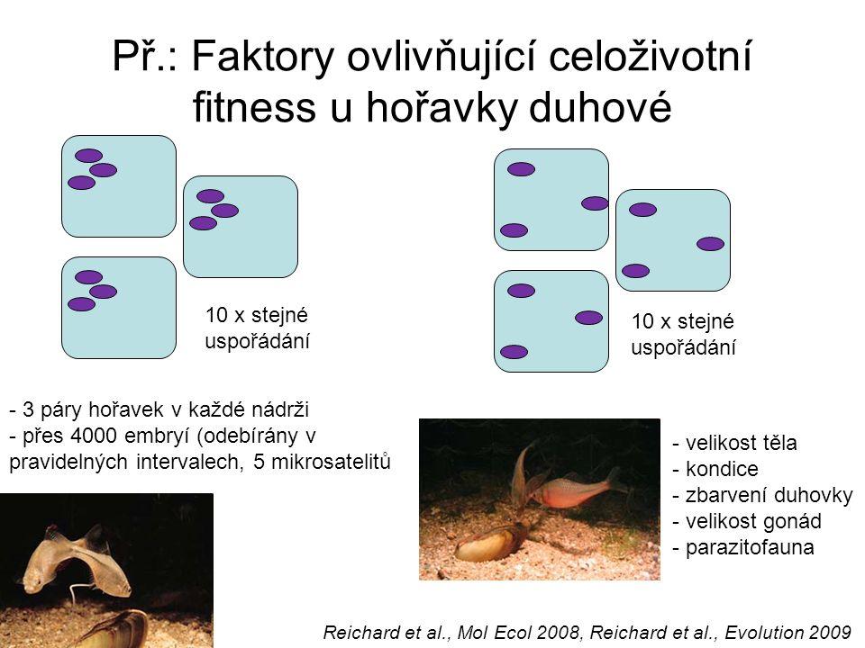 Molekularni Pristupy V Behavioralni Ekologii Ppt Stahnout
